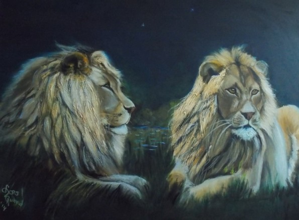 2 leeuwen in de nacht