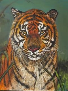 tijger met groene 1